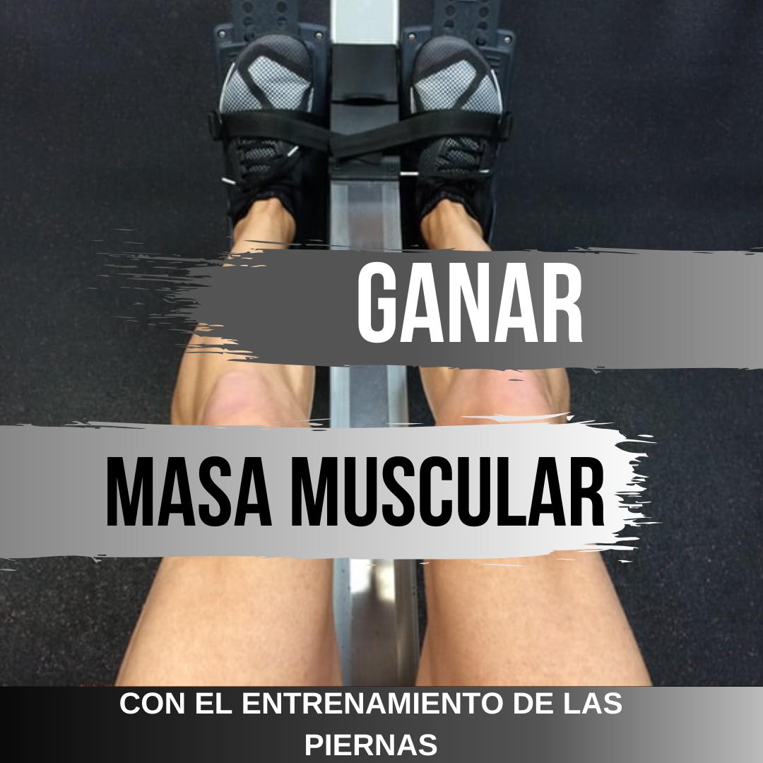 ganar masa muscular albert montasell